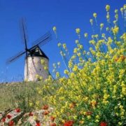 Amazing windmill