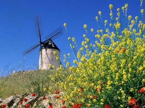 Amazing windmill