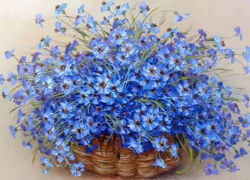 Beautiful forget-me-nots