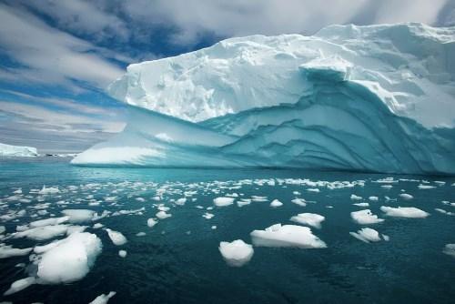 Charming Antarctica