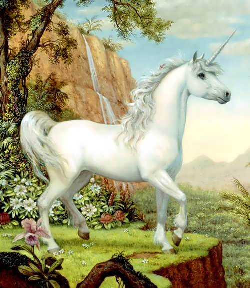 Charming unicorn