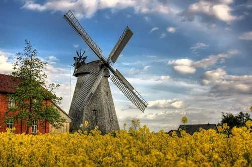 Charming windmill