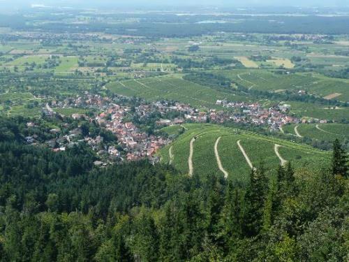Graceful Baden-Baden