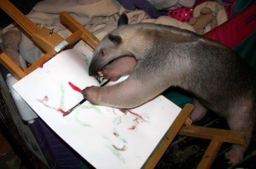 Stewie – unusual painter