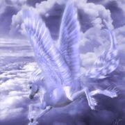 Amazing Pegasus