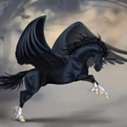 Attractive Pegasus