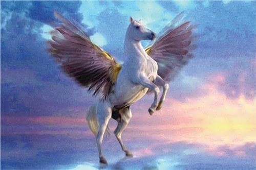 Beautiful Pegasus