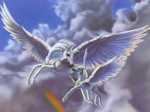 Charming Pegasus