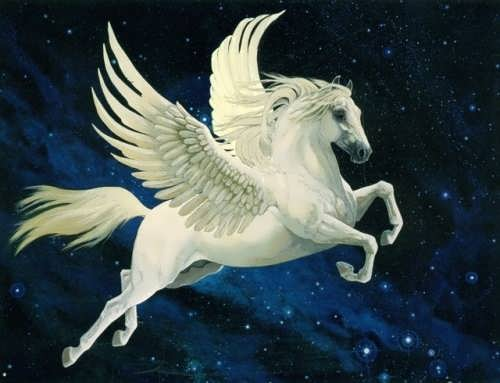 Graceful Pegasus