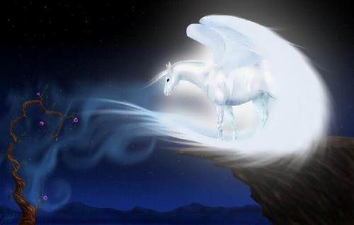 Lovely Pegasus