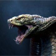 Majestic cobra