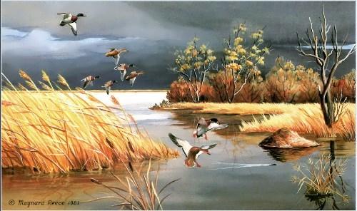 Mallards by Maynard Reece