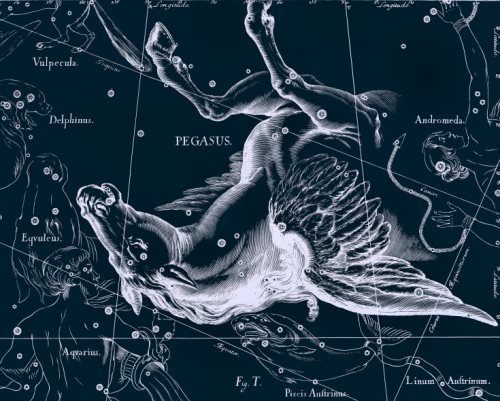 Pegasus on the map