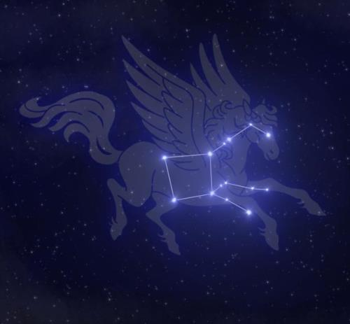 Winged horse in the night sky