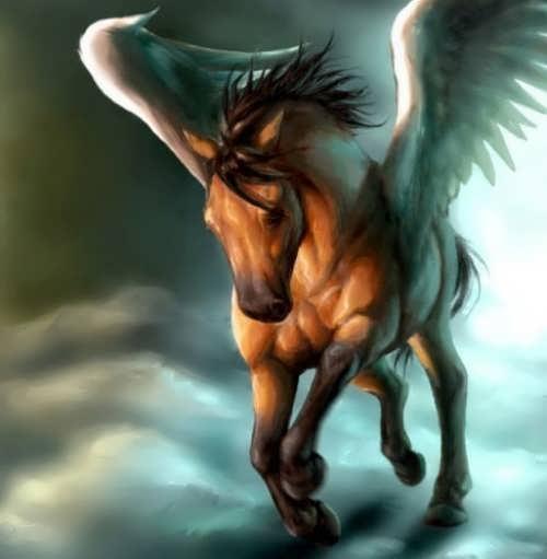 Wonderful Pegasus