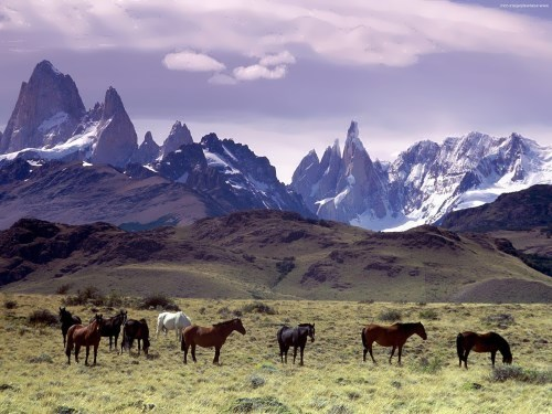 Awesome Andes