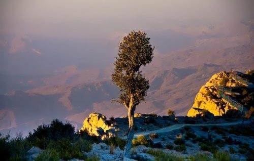 Gorakh Hill