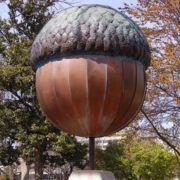 Monument to the acorn