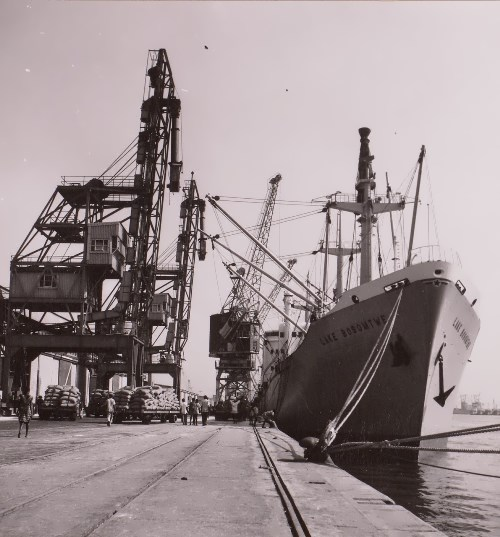 Port embankment with gantry cranes and cargo ships
