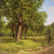 Zaitsev Vitaliy. Oak grove