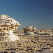 Amazing Sahara