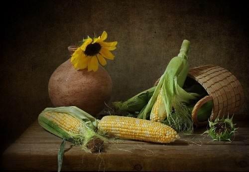 Amazing corn