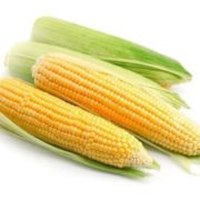 Attractive maize