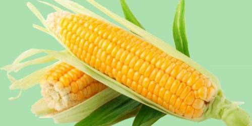 Awesome maize