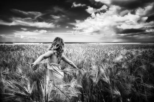 Awesome wheat. Photo by Alisdair Miller