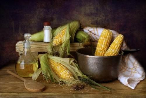 Beautiful maize