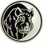 Boar on the coin