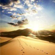 Charming Sahara