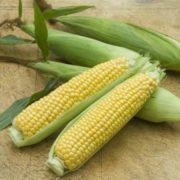 Cute corn