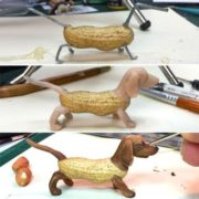 Dachshund by Steve Cassino
