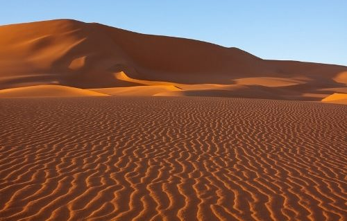 Dunes. Photo by Victoria Rogotneva