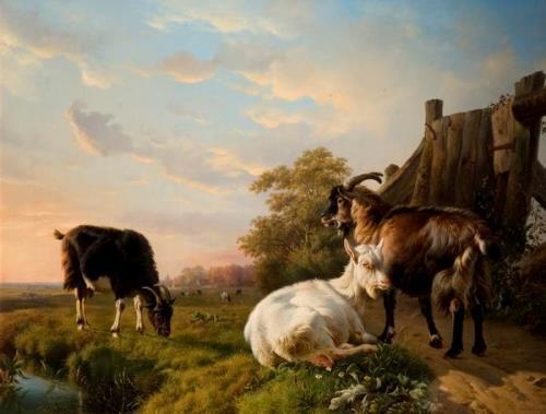 Eugene Joseph Verboeckhoven. Goats