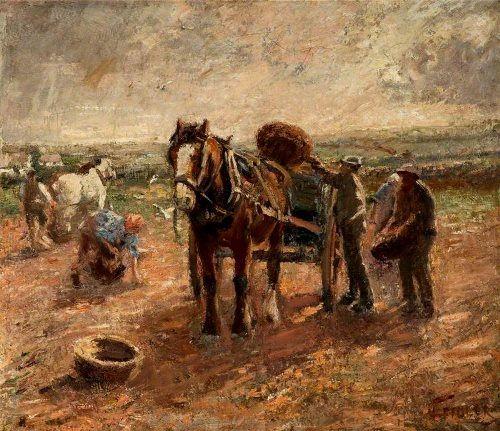 Harry Fidler. Clearing the Potato Field.