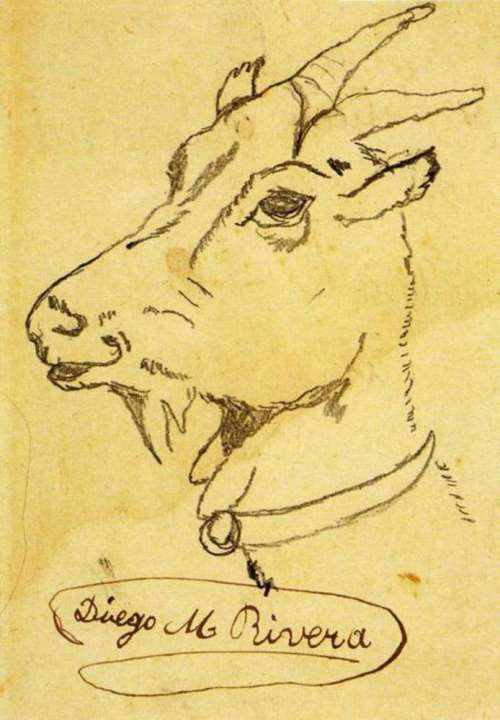 Head of a Goat - Diego Rivera, 1900