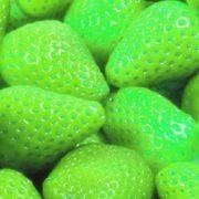 Light green strawberry