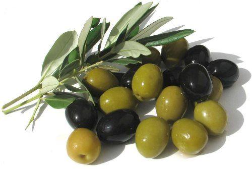 Lovely olive