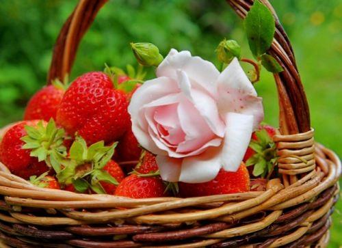 Lovely strawberry