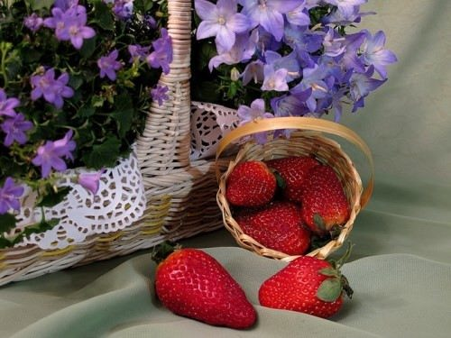 Magnificent strawberry