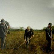 Martin Driscoll. Digging Potatoes.