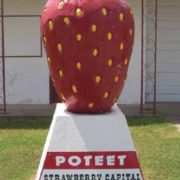 Monument to strawberries in Poteet, Texas, USA