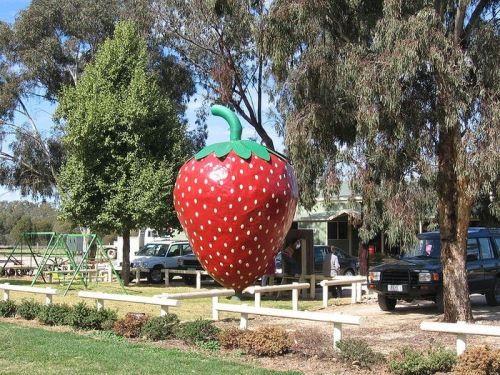 Monument to strawberry in Australia