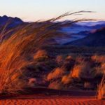 Namibia – Beautiful, Arid Place