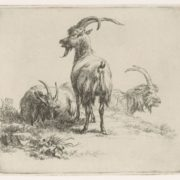 Nicolaes Pietersz Berchem. Three goats