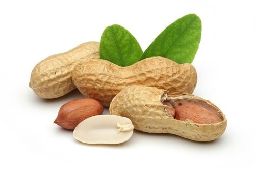 Peanut – when nut not nut