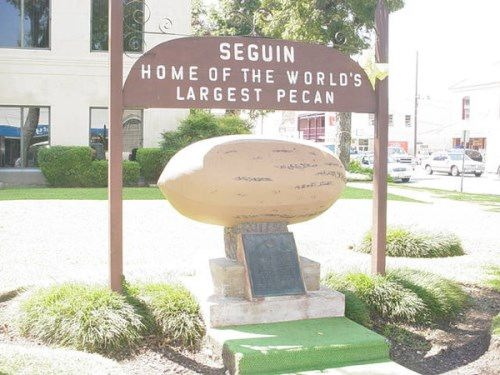 Pecan nut monument in Seguin, Texas, United States