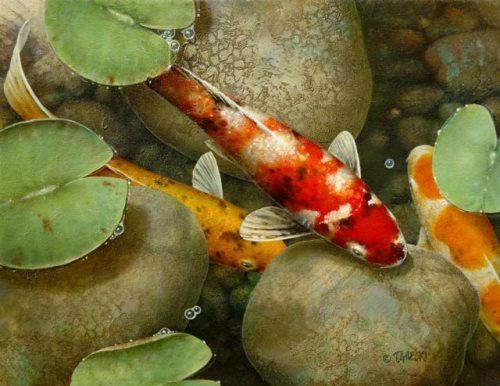 Pretty koi. Artist Terry Gilecki